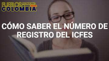 Como saber el numero de registro del icfes