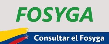 Certificado Fosyga CONSULTA