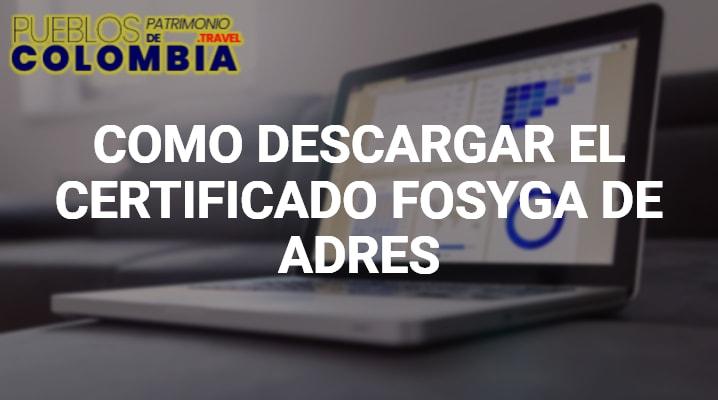 Certificado Fosyga