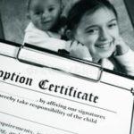 Organismos encargados de la adopción