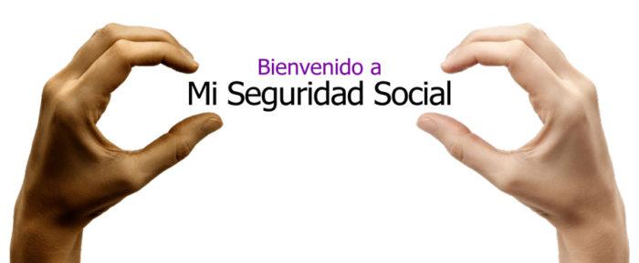 seguridad social introduccion