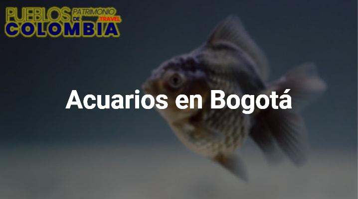Acuarios en Bogotá