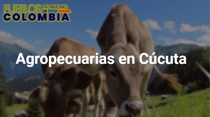 Agropecuarias en Cúcuta