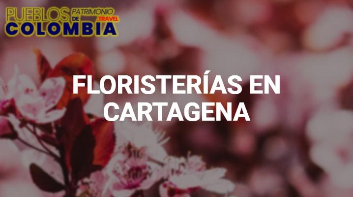 Floristerías en Cartagena