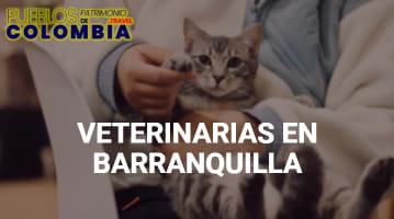 Veterinarias en Barranquilla