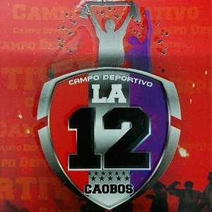Campo Deportivo La 12