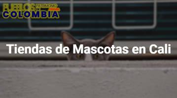 Tiendas de Mascotas en Cali