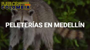 Peleterías en Medellín