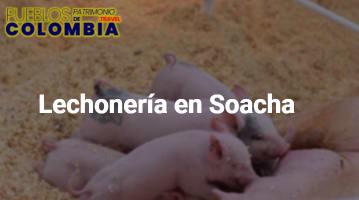 Lechonería en Soacha