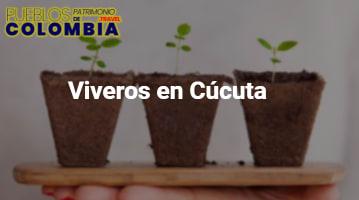 Viveros en Cúcuta